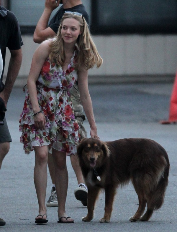 Amanda Seyfried on the sets of The Wedding in Stamford - July 28, 2011