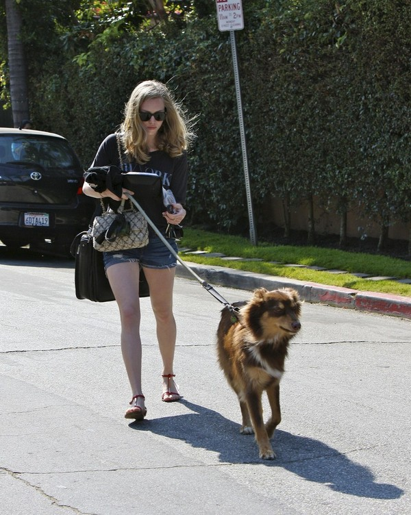 Amanda Seyfried walking with her dog in shorts - July 05, 2011